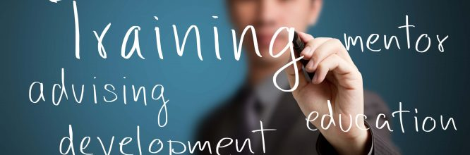 What you need to know about training tenders 2018
